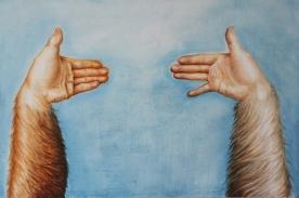 Llamas talking in the sky, 40 x 60 cm